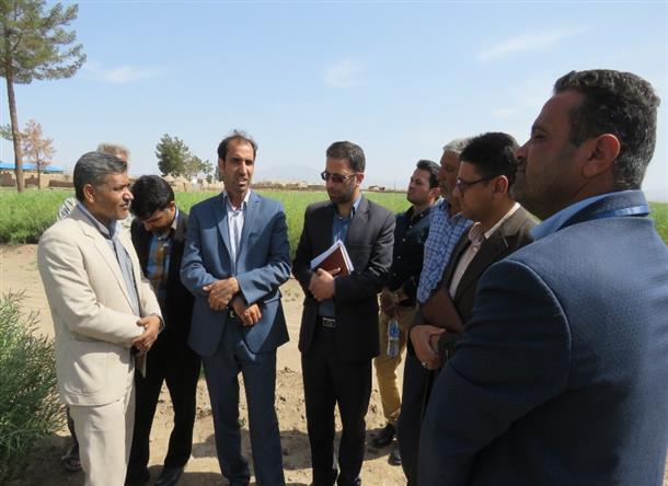 گزارش تصويري بازديد فرماندار شهرستان خوسف از شركت سهامي زراعي سرچاه عماري